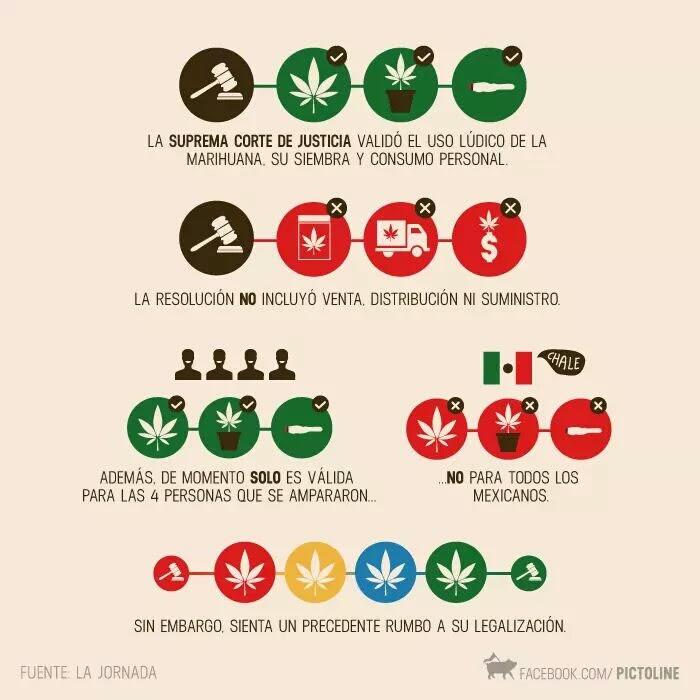 legalización de marihuana en el país de méxico