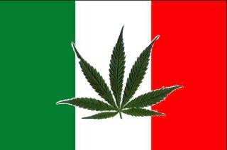 méxico marihuana