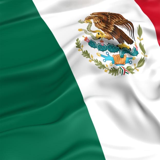 Selección de Placa Específica sfpya.edomexico.gob.mx