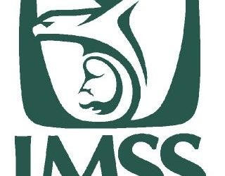 Modificación de Pensión por Monto Pagado ante el IMSS