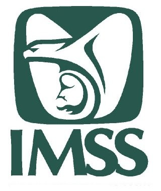 Programa Piloto Trabajadoras del Hogar IMSS